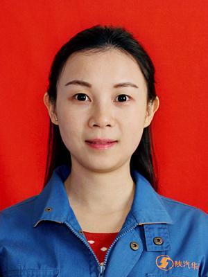 谭欣----陕西省国资委监管企业财务管理工作先进个人